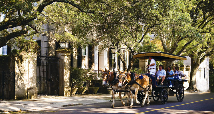 Charleston Carriage Tours Image