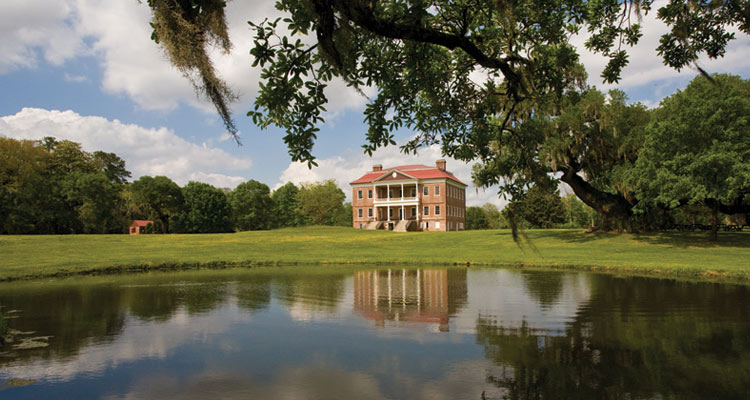 Charleston Plantation Tours Image