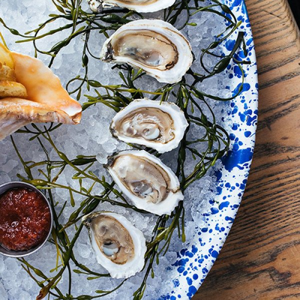 31 Spots for Oysters in Charleston