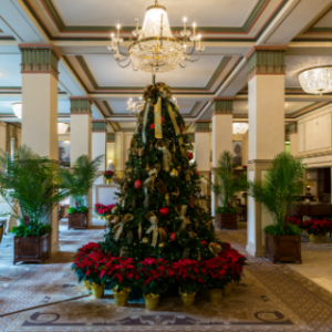 christmas day dinner buffet package francis marion hotel package