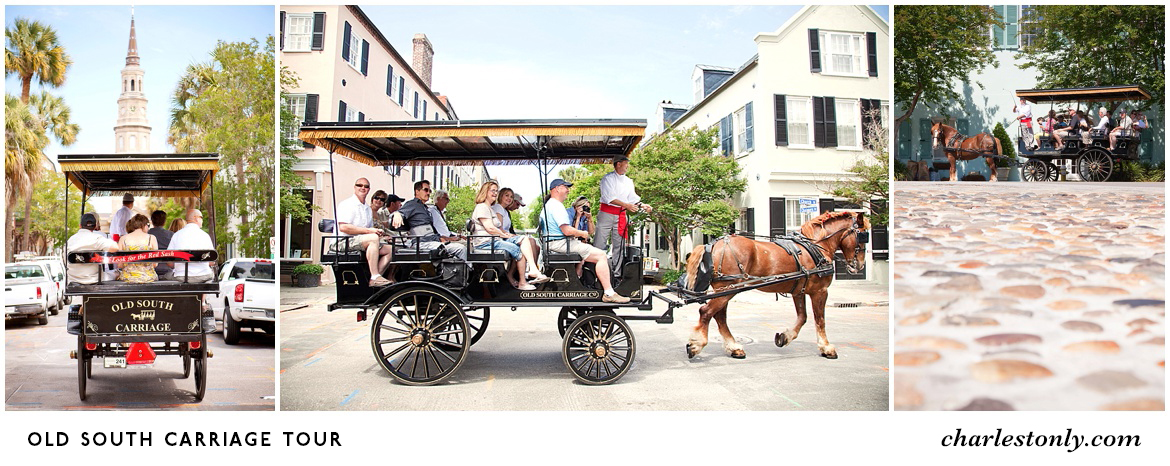 Old South Carriage Tour