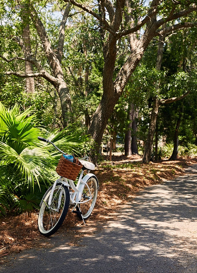 Photograph of a bike trail at the Boardwalk Inn at Wild Dunes Resort