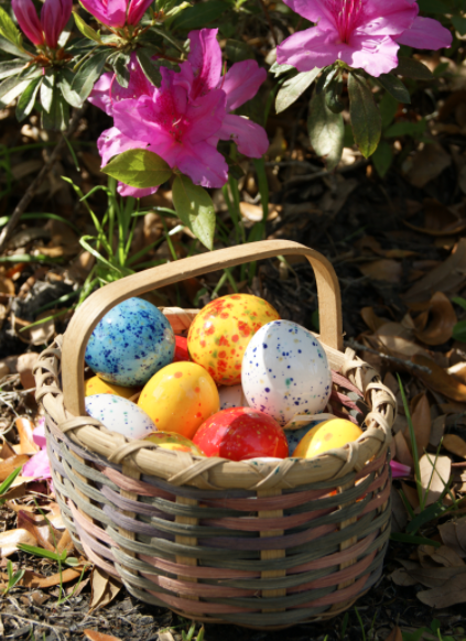 Easter eggstravaganza charleston events charleston event calendar date negle Image collections
