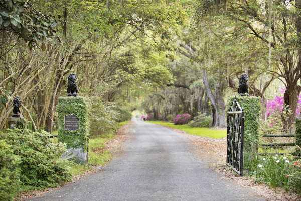 February Travel Guide to Charleston